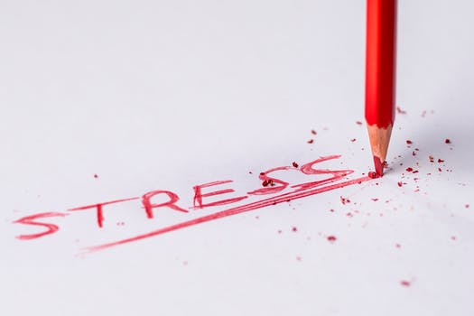 HR Professionals Overwhelmed by Stress